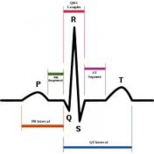 Basic EKG's For Radiology (Online